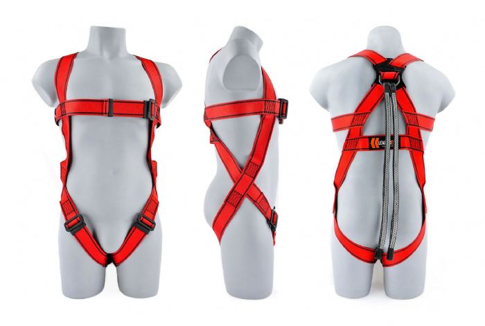 1-Point Harness + Twin Tail